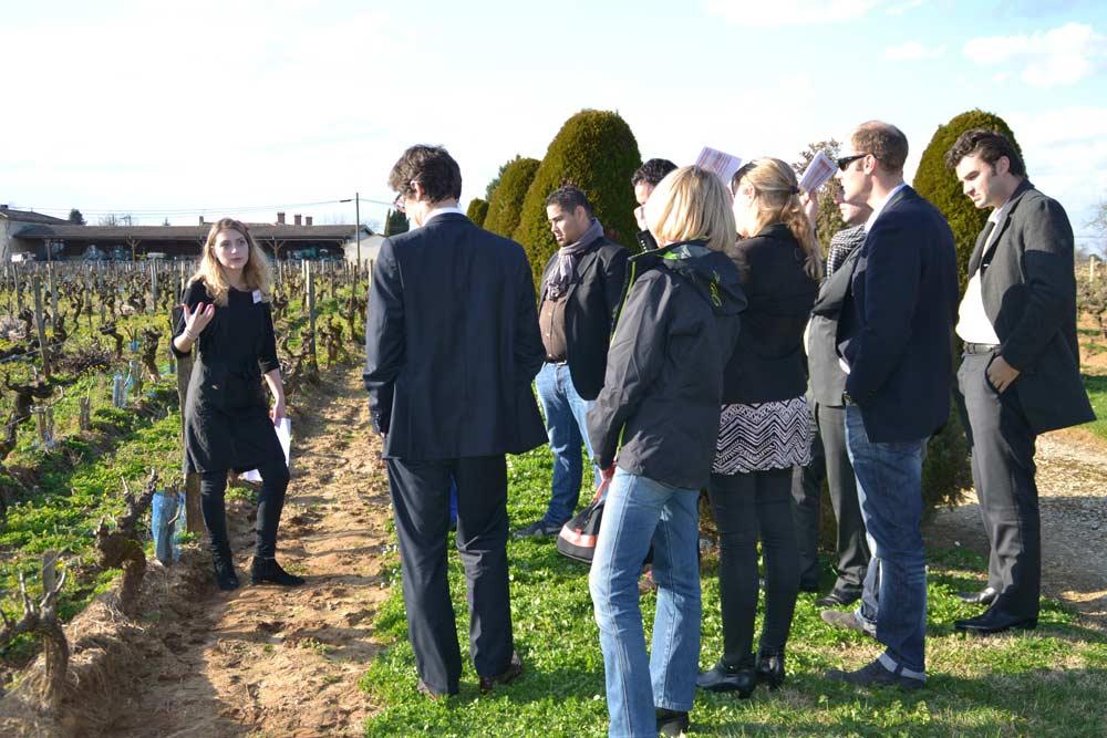 VIsite sensorielle et dégustation de vins par Œnanim à Bordeaux