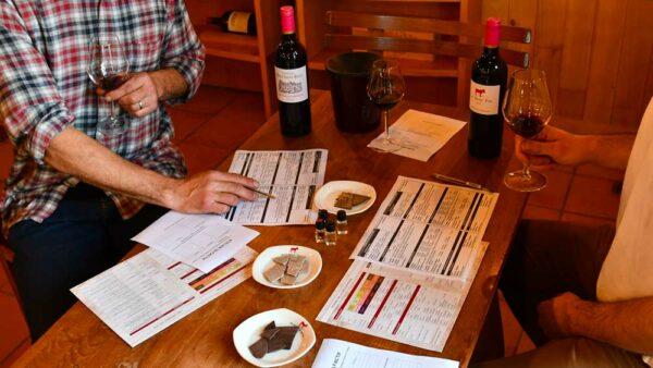 Initiation à l'oenologie à Bordeaux par Oenanim